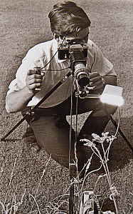 Stephen Dalton using flash to photograph insects in the field with Leitz Hektor lens equipped with home-made automatic diaphragm mounted on Nikon camera body, 1969.  -  Stephen  Dalton