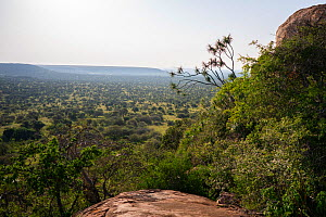 View from top of escarpment, looking out over Suyian Ranch, Laikipia County, Kenya.  -  Will Burrard-Lucas