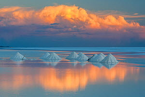 Salt cones on the Salar de Uyuni, Bolivia. March. The Salar is the world's largest salt flat, at over 10500 square kilometers. Salt is shoveled into these cones, to be collected later.  -  John Shaw