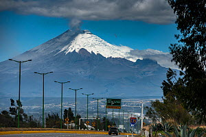 Cotopaxi Volcano, an active volcano which errupted in mid August 2015. Intermittent explosions continue with the release of gas, steam and ash. Cotopaxi National Park, Avenue of the Volcanoes, Andes,...  -  Pete Oxford