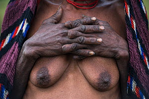 Dani tribe woman. Her fingers were removed after the death of a relative. First crushed with a stone then cut off. Budaya village, Suroba, Trikora Mountains, West Papua, Indonesia. March 2018. This ri...  -  Pete Oxford