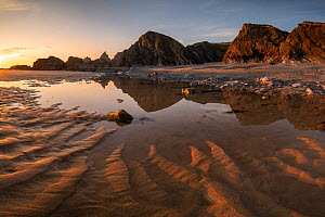 Sandymouth Bay in evening light, at low tide, reflections of cliffs in pool. Near Bude, Cornwall, England, UK. June 2020.  -  Ross Hoddinott