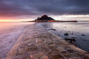RF - Causeway leading to St Michael's Mount, at sunrise. Marazion, Cornwall, England, UK. January 2014. (This image may be licensed either as rights managed or royalty free.)  -  Ross Hoddinott