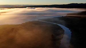 Aerial footage of a misty morning over wetland, Golsfjell, Buskerud, Norway, July.  -  Pal Hermansen
