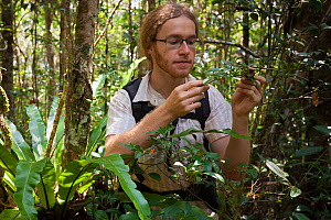 Photographer Alex Hyde exploring the forest for insect species. Andasibe-Mantadia National Park, Madagascar. 2009  -  Alex Hyde
