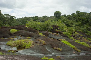 Man standing amongst inselberg granite rock formations in rainforest. Near Oyapock River, French Guiana. 2015.  -  Pascal Kobeh