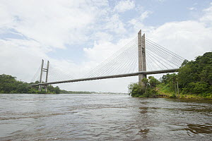 Suspension bridge over Oyapock River, bridge connects French Guiana with Brazil. French Guiana. 2015.  -  Pascal Kobeh