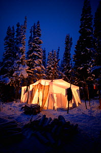 Light shining from tent at Innu hunting camp at dusk, in snow covered boreal forest. Southern Labrador, Newfoundland and Labrador, Canada.  -  Bryan and Cherry Alexander