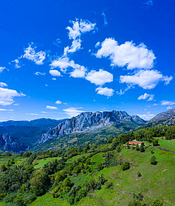 Aerial view of Chapel of Santa Maria surrounded by European yew (Taxus baccata) and mountains in distance, Las Ubinas-La Mesa Natural Park. Asturias. Spain. August 2020.  -  Juan Carlos Munoz