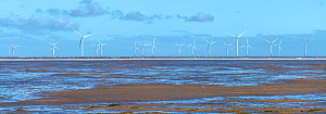 North Hoyle offshore windfarm viewed at low tide from Hoylake promenade, Wirral, Merseyside, UK. September 2020  -  Alan Williams