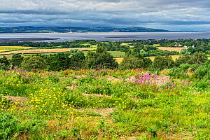 View from Thurstaston Hill on the Wirral across the River Dee Estuary with the hills of North Wales in distance, UK August 2020  -  Alan Williams
