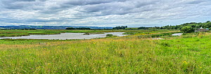 RSPB Burton Mere wetlands showing the scrape and the visitor centre on the right ,with the hills of North Wales in distance, UK. July 2020  -  Alan Williams