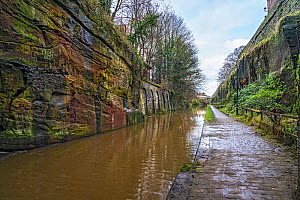 Shropshire Union Canal in cut through sandstone rock in the centre of the city of Chester, Cheshire, UK, December 2019  -  Alan Williams