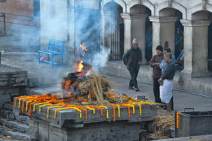Body being cremated at the cremation ghat, Pashupatinath temple, Kathmandu, Nepal. March 2019.  -  Dave Watts