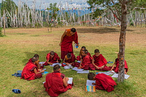 Young Monks in class. Chime Lhakhang Temple (The 'fertility temple') Bhutan. September 2013.  -  Jeff Foott