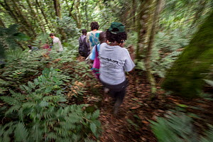 Conservation Through Public Health (CTPH) founder Dr. Gladys Kalema-Zikusoka with visitors and rangers, hiking through the hills of Bwindi Impenetrable National Park to check on the health of gorillas...  -  Jo-Anne McArthur / We Animals