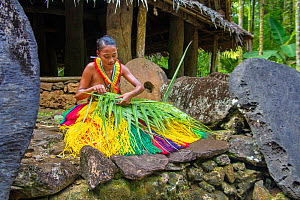 Young Yapese woman in a traditional outfit for cultural ceremonies, weaving a basket from a palm frond and surrounded by stone money in a village on the island of Yap, Micronesia. Model released.  -  David Fleetham
