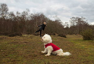 Forced perspective photo of a young woman appearing to stand / balance on a dog's nose, UK.  -  Mark Taylor
