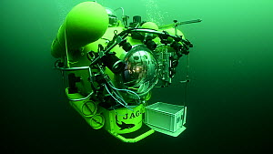A research submersible navigating underwater near the Lophelia sulareef, Trondheimfjord, North Atlantic Ocean, Norway.  -  Solvin Zankl