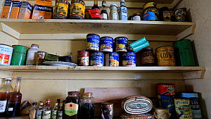 Zoom out of food supplies in Station W, a former British scientific research station, left as it was after researchers evacuated in 1959, Detaille Island, Graham Land, Antarctica, 2020.  -  Ashley Cooper