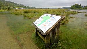 A park information board partially submerged underwater due to the River Brathay completely over flowing following a June record amount of rain falling in 24 hours, Ambleside, Lake District, UK.  -  Ashley Cooper