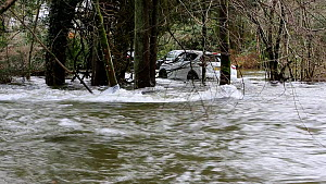 Parked cars partially submerged underwater due to flooding caused by Storm Ciara at Rothay Bridge in Ambleside, Lake District, UK, February, 2020.  -  Ashley Cooper