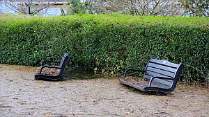 Benches partially submerged underwater due to floods caused by Storm Ciara at Lake Windermere, Ambleside, Lake District, UK, 2020.  -  Ashley Cooper