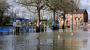 Bus station flooded by the River Severn after Storm Ciara and Storm Dennis lead to the wettest February recorded in the UK. Shrewsbury, Shropshire, England, UK, February 2020.  -  Ashley Cooper