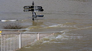 Street signs and railings partially submerged underwater due to flooding caused by the River Severn, after Storm Ciara and Storm Dennis resulted in the wettest February recorded in the UK. Bewdley, Wo...  -  Ashley Cooper
