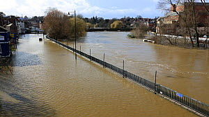 Flooding caused by the River Severn after Storm Ciara and Storm Dennis, which lead to the wettest February recorded in the UK, 2020.  -  Ashley Cooper
