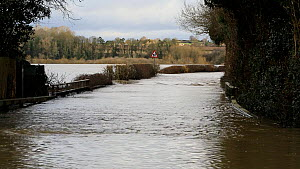 Zooming out showing farmland flooded by the River Severn after Storm Ciara and Storm Dennis, the wettest February recorded in the UK. Shrewsbury, Shropshire, England, UK, February 2020.  -  Ashley Cooper