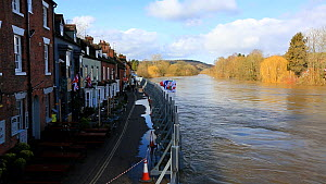 Flood defences holding back the River Severn floodwaters along street in Bewdley. The river overtopped the barriers after Storm Ciara and Storm Dennis, the wettest February recorded in the UK. Worcest...  -  Ashley Cooper