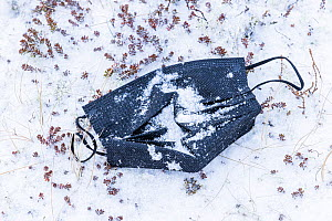 Discarded face mask in the snow, close to the parking lot near the eruption site of the Fagradalsfjall volcano, Iceland, 4  April  2021.~The volcano has drawn an estimated number of 30.000 visitors si...  -  Theo  Bosboom