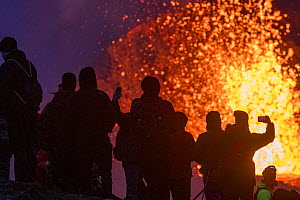 Group of tourists silhouetted against volcanic eruption, gathered at one of the viewing points close to the craters of the Fagradalsfjall volcano on Iceland. The best viewing points differ from day to...  -  Theo  Bosboom