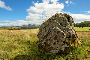Prehistoric standing stone on Mynydd Iltud Common with Pen Y Fan in the background, Brecon Beacons National Park, Wales, UK. July, focus stacked.  -  Will Watson