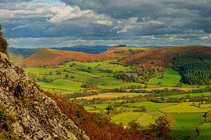 Herrock, Rushock and Bradnor Hill and the Back Brook glacial and meltwater valley in Herefordshire, from Hanter Hill, Stanner-Hanter Complex of the Neoproterozoic Age, Radnorshire, the Welsh Marches,...  -  Will Watson
