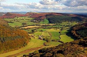 Bradnor hill (National Trust) from Hergest Ridge, Herefordshire Wales/ England border, October  -  Will Watson