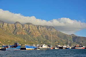 Hout Bay's harbour on the west side of the Cape Peninsula, Western Cape, South Africa. Atlantic Ocean.  -  Pascal Kobeh