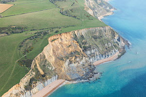 Sandstone cliff which collapsed on the 13th April 2021 between Seatown and Eype Beach in Dorset, UK. This was the largest such incident in the UK in the past 60 years. The cliff lost 300m of rock and...  -  Dan Burton