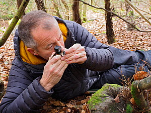 Photographer Andy Sands searching for slime moulds in woodland, Buckinghamshire, England, UK, February  -  Andy Sands