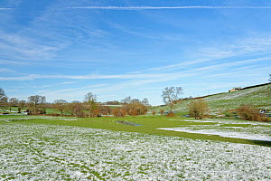 Snow-dusted pastureland and recently flooded water meadow with resting gulls by the Bybrook River, near Box, Wiltshire, UK, January 2021.  -  Nick Upton