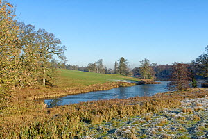 Bowood Lake, landscaped by Capability Brown, on a frosty winter morning, Bowood Park, Derry Hill, Wiltshire, UK, December 2020.  -  Nick Upton