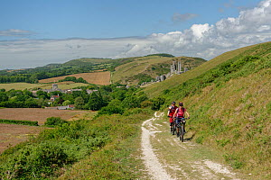 Mountain bikers cycling up the Purbeck Way to Ballard Down from Corfe Castle, Dorset, UK, August 2020.  -  Nick Upton