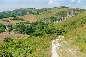 View down the Purbeck Way from Ballard Down to Corfe Castle, Dorset, UK, August 2020.  -  Nick Upton