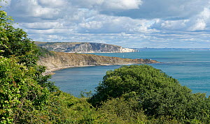 Overview of Durlston Bay and Peverill Point from Durlston Head, with Ballard Down and Old Harry's Rocks in the background, Swanage, Dorset, UK, August 2020.  -  Nick Upton