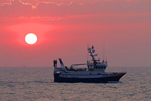Sunset and fishing vessel 'Harvester' on the North Sea, August 2020. Property released.  -  Philip  Stephen