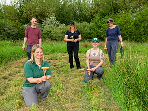 Ellie Jones of Wiltshire Wildlife Trust and a team of volunteers holding their dibbers after using them to dig holes for hundreds of Devil's bit scabious (Succisa pratensis) plant plugs in a forme...  -  Nick Upton