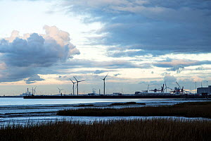 Severn Estuary at dusk with tidal mudflats and the industrial complex of Avonmouth beyond, England, UK. November 2020.  -  John Waters