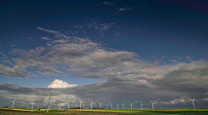Wind turbines in field, Fieulaine, Aisne, Picardy, France, October 2020.  -  Pascal  Tordeux