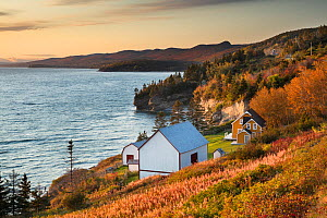 Traditinal barn and cottage at Anse Blanchette, Forillon National Park, Gaspesie, Quebec, Canada. October 2019.  -  David Noton